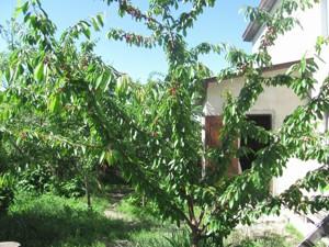 Дом Z-1192075, Дружбы, Киев - Фото 12