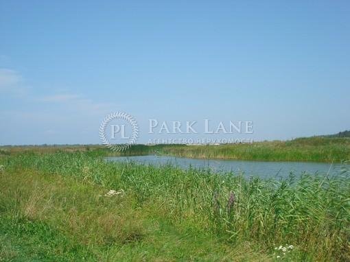 Земельный участок Хотяновка, I-12745 - Фото 6