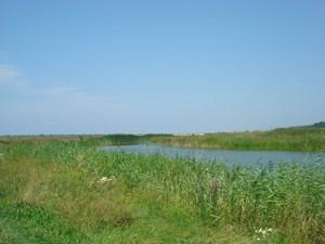 Земельный участок I-12745, Хотяновка - Фото 6