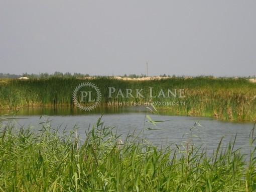 Земельный участок Хотяновка, I-12745 - Фото 7