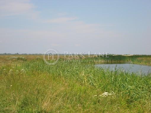Земельный участок Хотяновка, I-12745 - Фото 8