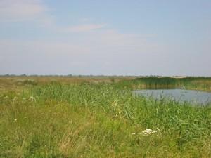 Земельный участок I-12745, Хотяновка - Фото 8