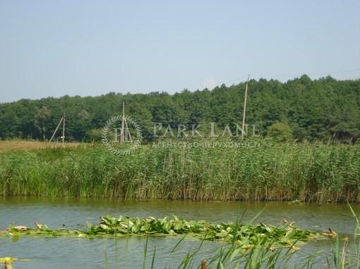 Земельный участок Хотяновка, I-12745 - Фото 9