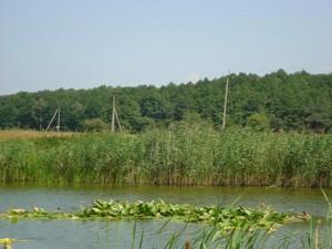 Земельный участок I-12745, Хотяновка - Фото 9