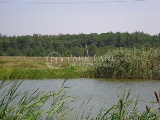 Земельный участок Хотяновка, I-12745 - Фото 10