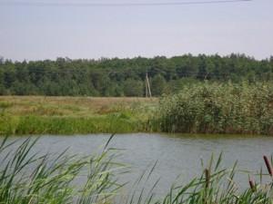 Земельный участок I-12745, Хотяновка - Фото 10