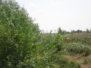 Земельный участок I-12745, Хотяновка - Фото 11