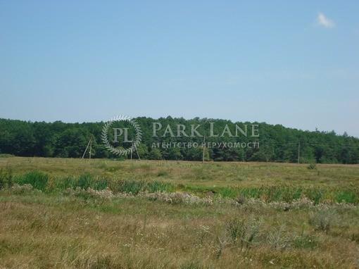 Земельный участок Хотяновка, I-12745 - Фото 12