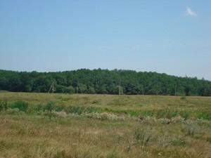 Земельный участок I-12745, Хотяновка - Фото 12