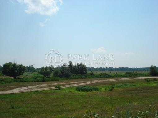 Земельный участок Хотяновка, I-12745 - Фото 14