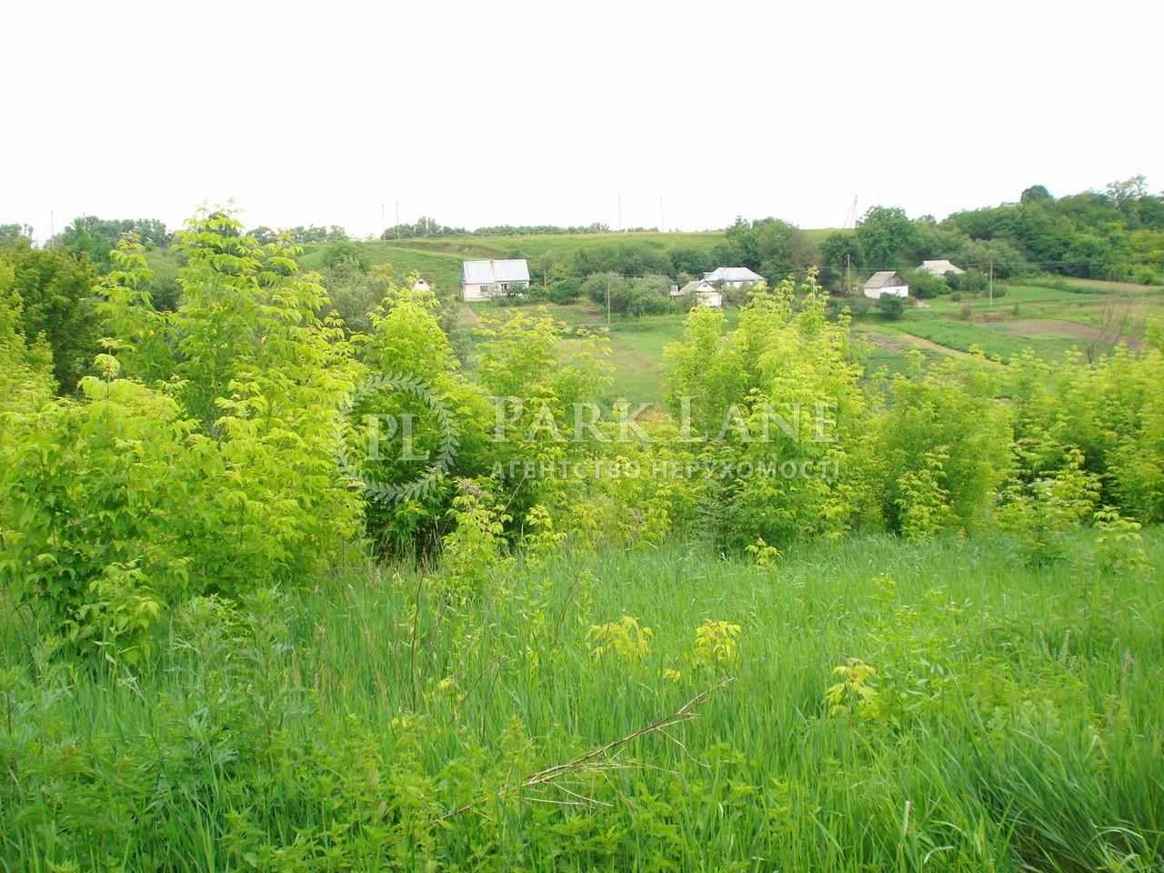 Земельный участок I-19199, Большая Ольшанка - Фото 2