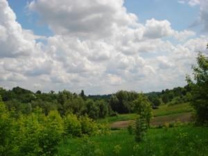 Земельный участок I-19199, Большая Ольшанка - Фото 6