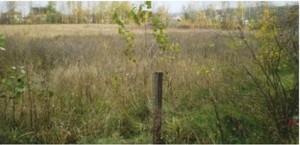 Земельный участок K-15724, Вишенки - Фото 2