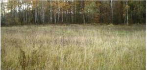 Земельный участок K-15724, Вишенки - Фото 3