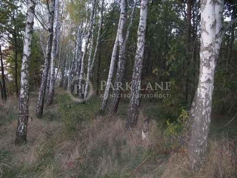 Земельный участок K-15724, Вишенки - Фото 7