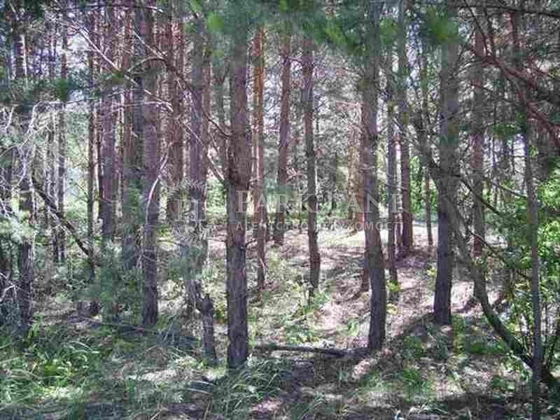 Земельный участок K-15724, Вишенки - Фото 5
