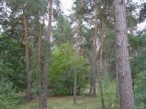 Земельный участок K-15724, Вишенки - Фото 6