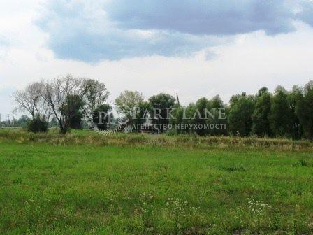 Земельный участок Летки, L-16330 - Фото 8