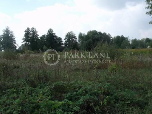 Земельный участок Вишенки, L-16727 - Фото 3