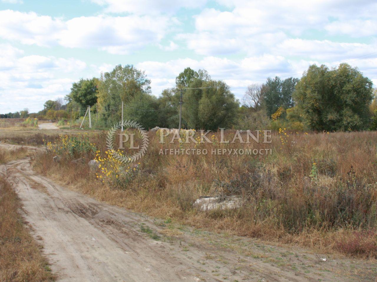 Земельна ділянка Святопетрівське (Петрівське), L-18048 - Фото 1