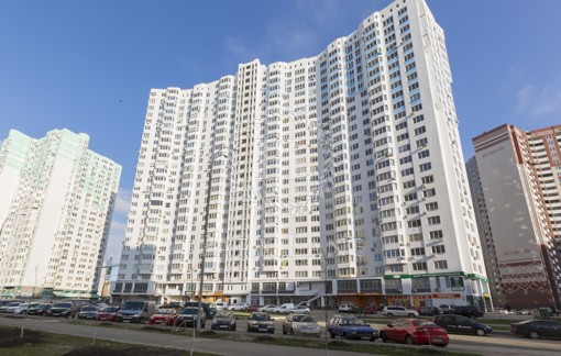Apartment Chavdar Yelyzavety, 13, Kyiv, R-27232 - Photo