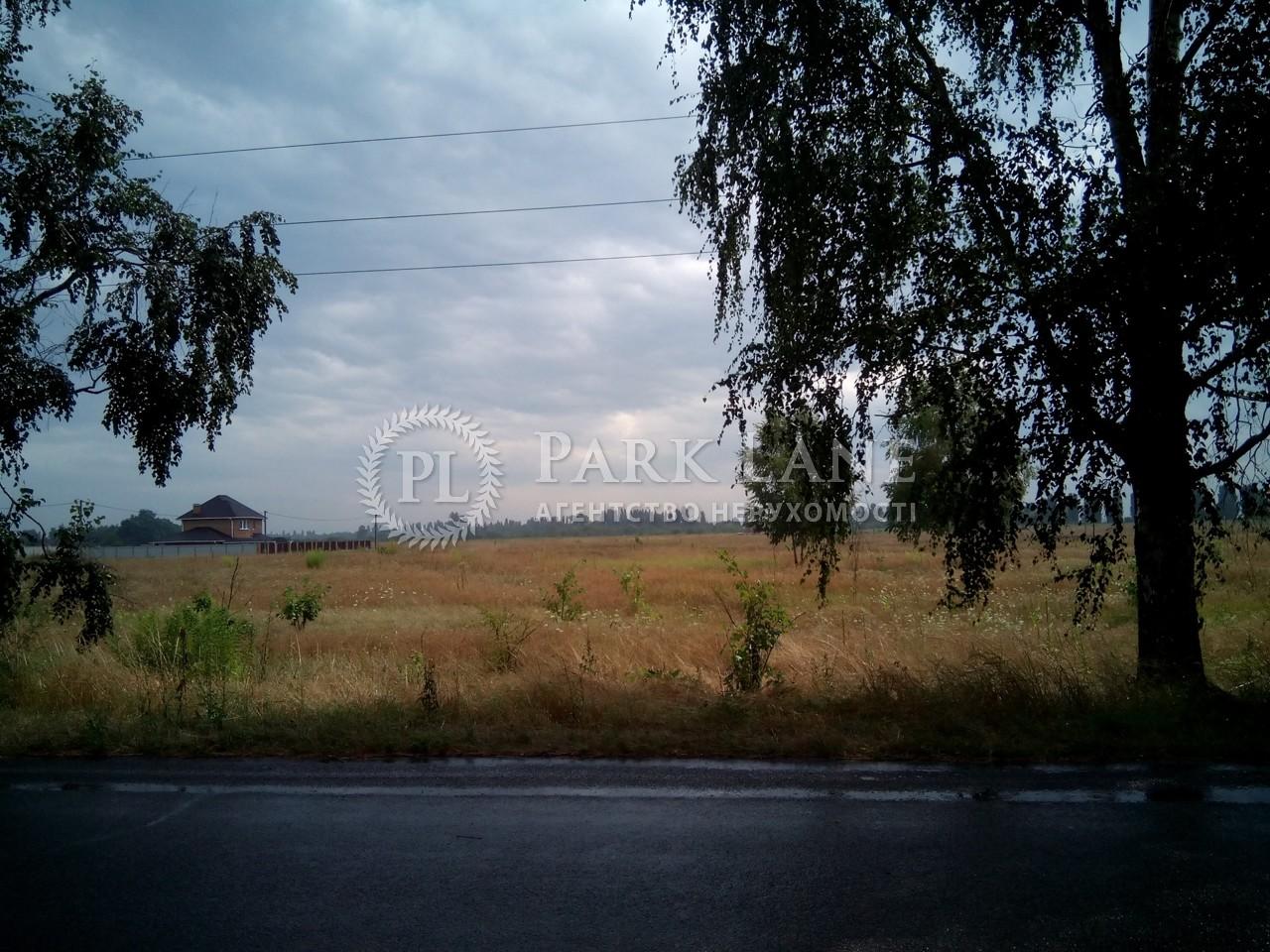 Земельна ділянка Петрівське (Бориспільський), R-6641 - Фото 1