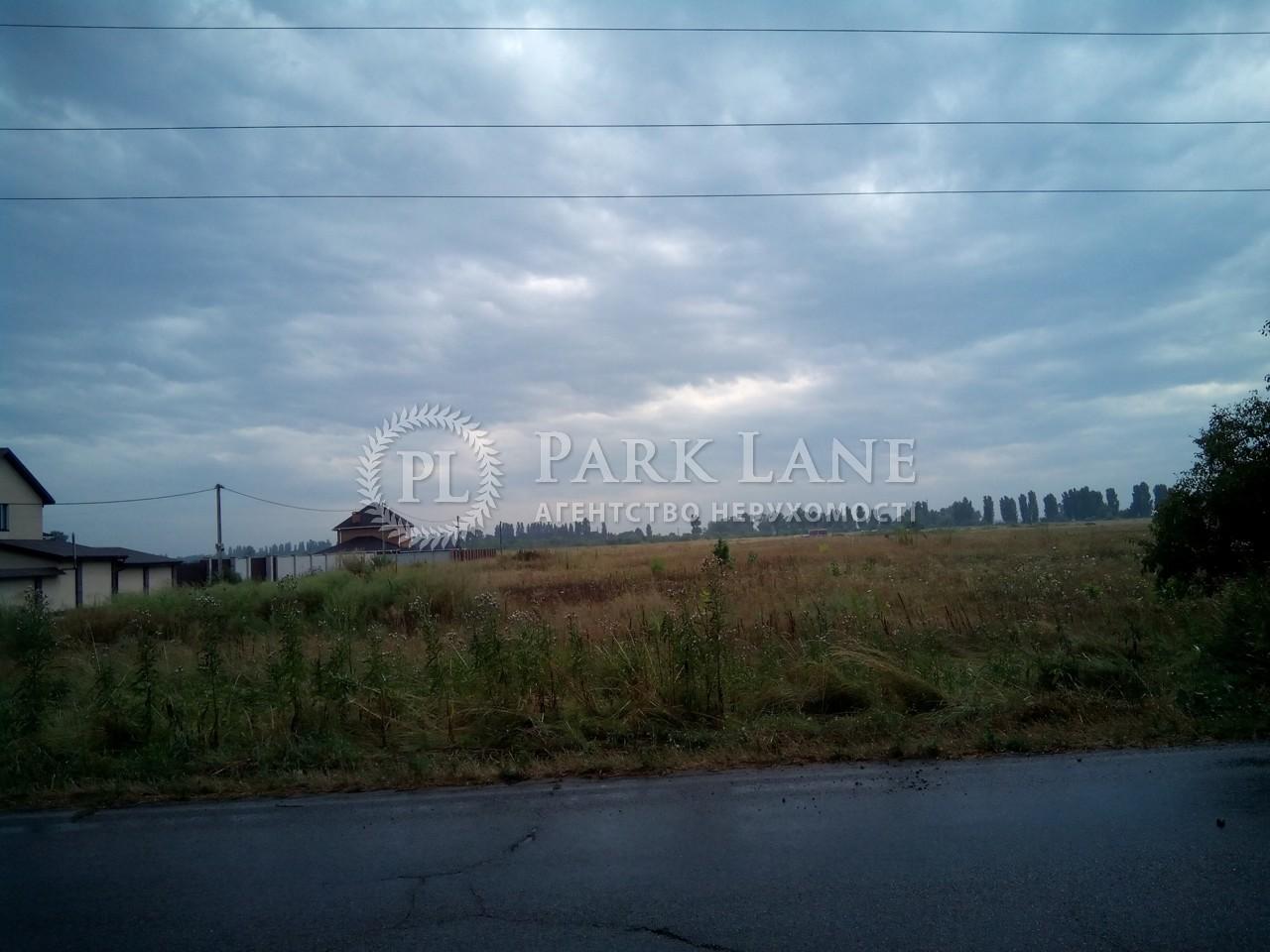 Земельна ділянка Петрівське (Бориспільський), R-6641 - Фото 2