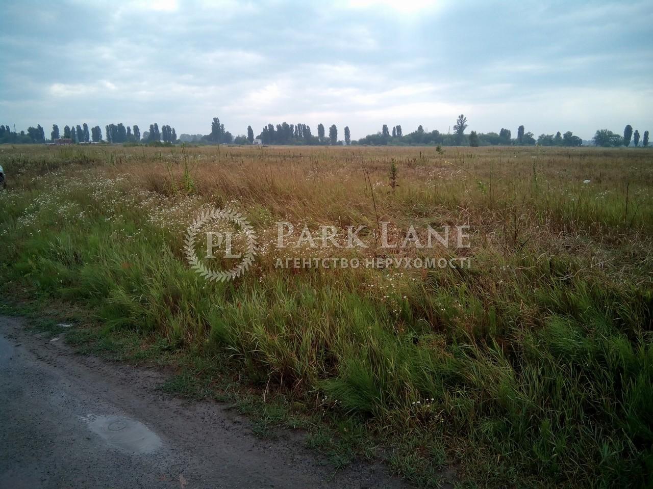 Земельна ділянка Петрівське (Бориспільський), R-6641 - Фото 3
