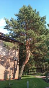 Дом B-95271, Лебедевка (Вышгородский) - Фото 16
