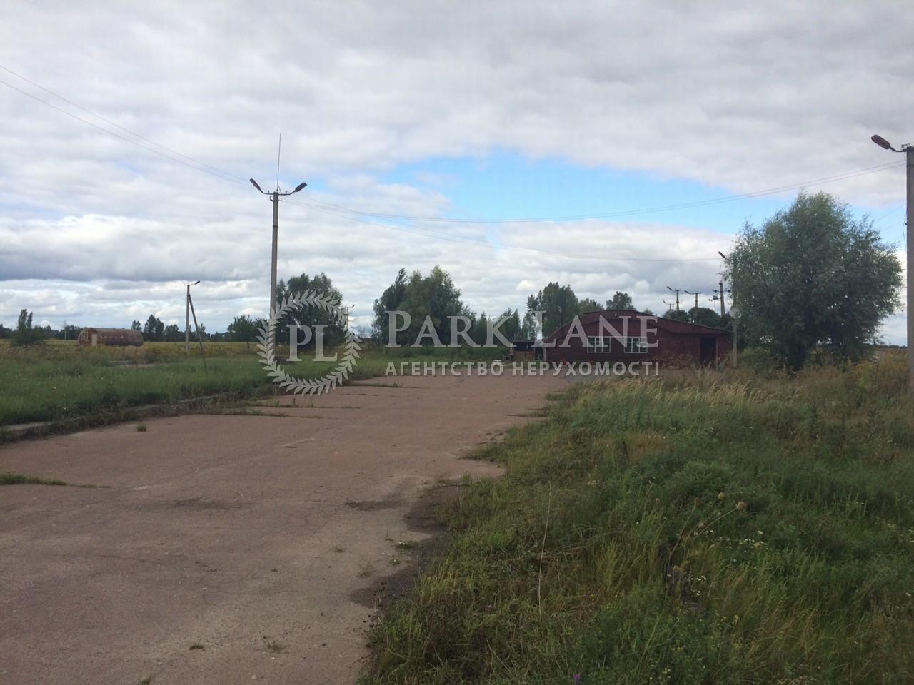 Земельный участок Борисполь, K-949 - Фото 4