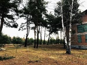 Дом R-15281, Лебедевка (Вышгородский) - Фото 6