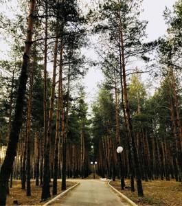 Дом R-15281, Лебедевка (Вышгородский) - Фото 7