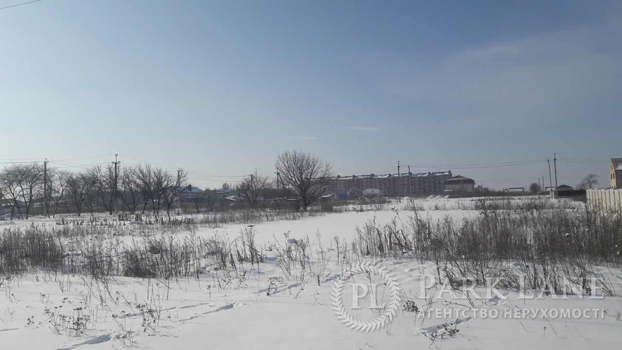 Будинок вул. Вишнева, Нові Петрівці, R-15559 - Фото 54