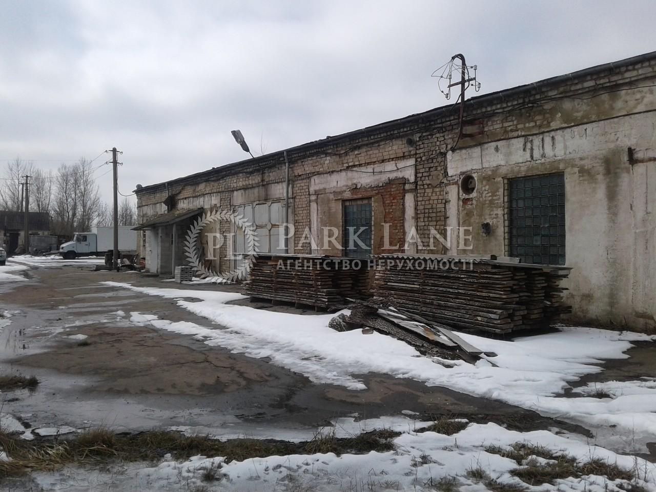 Нежитлове приміщення, Z-677165, Калинівка (Макарівський) - Фото 16