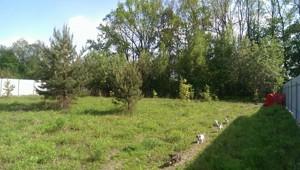 Земельный участок N-19220, Мархалевка - Фото 3