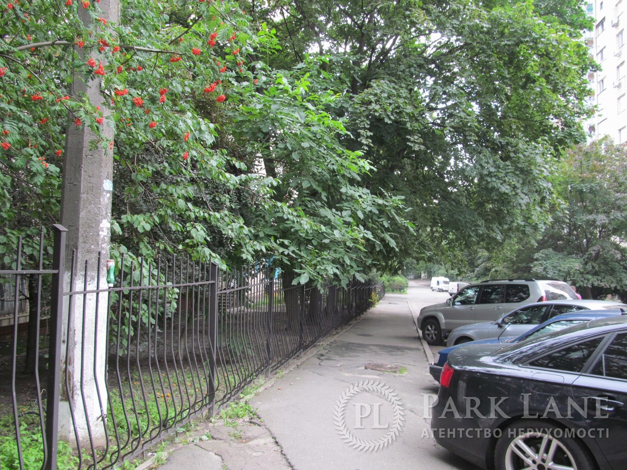 Квартира ул. Черновола Вячеслава, 8, Киев, R-19490 - Фото 16