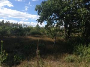 Земельный участок B-97549, Любимовка (Киево-Святошинский) - Фото 5