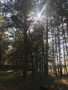 Земельный участок N-20168, Процев - Фото 2