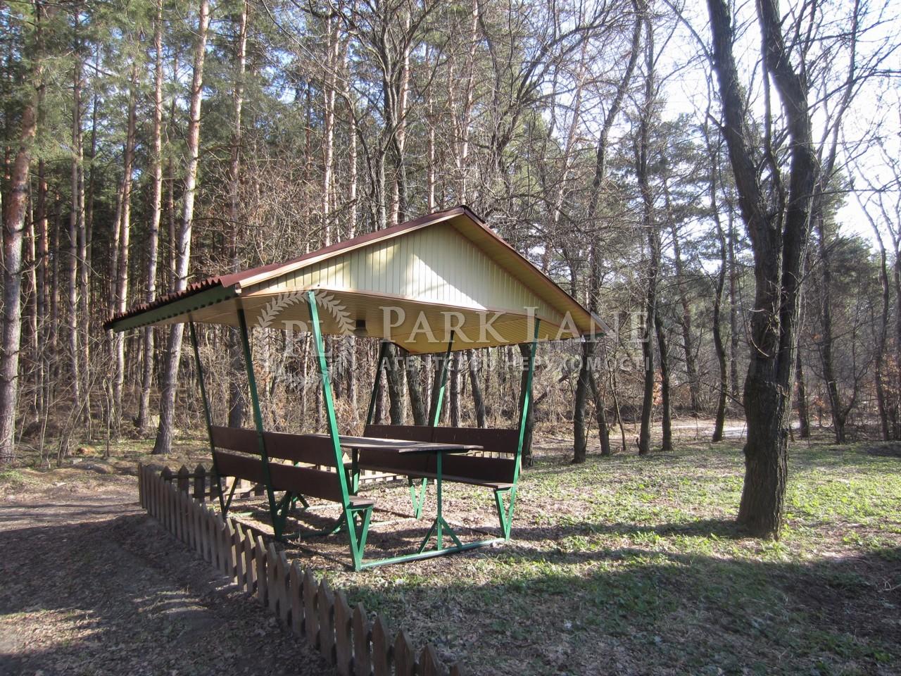 Дом Застугна (Васильковский), R-22282 - Фото 9