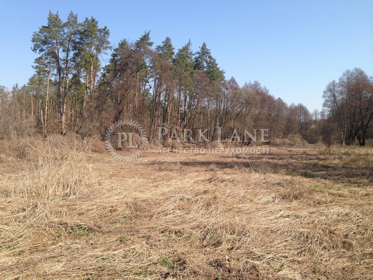 Земельный участок Любимовка (Киево-Святошинский), B-97549 - Фото 8