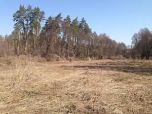 Земельный участок B-97549, Любимовка (Киево-Святошинский) - Фото 8