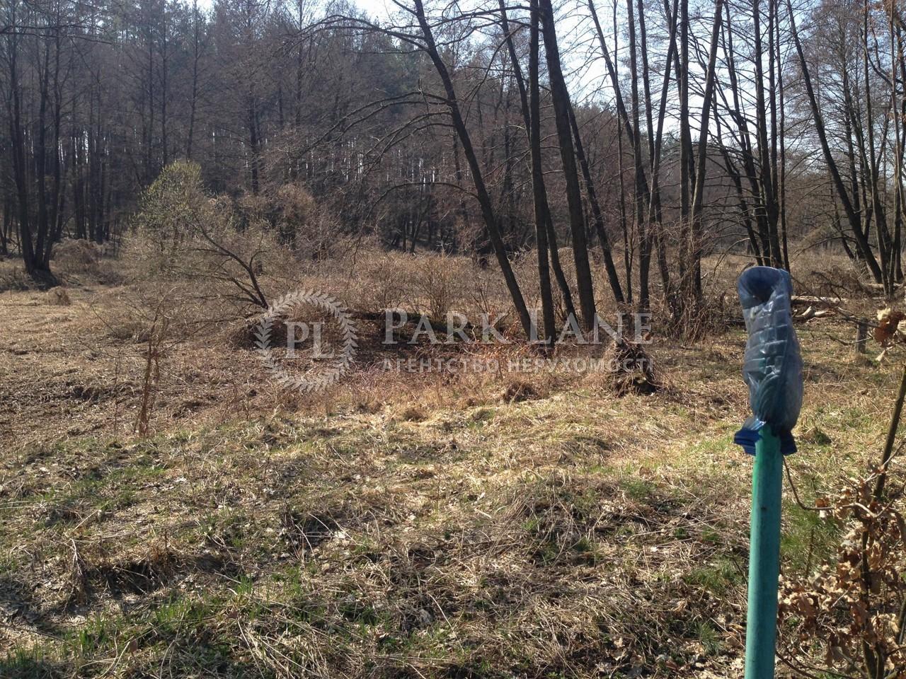 Земельный участок Любимовка (Киево-Святошинский), B-97549 - Фото 9