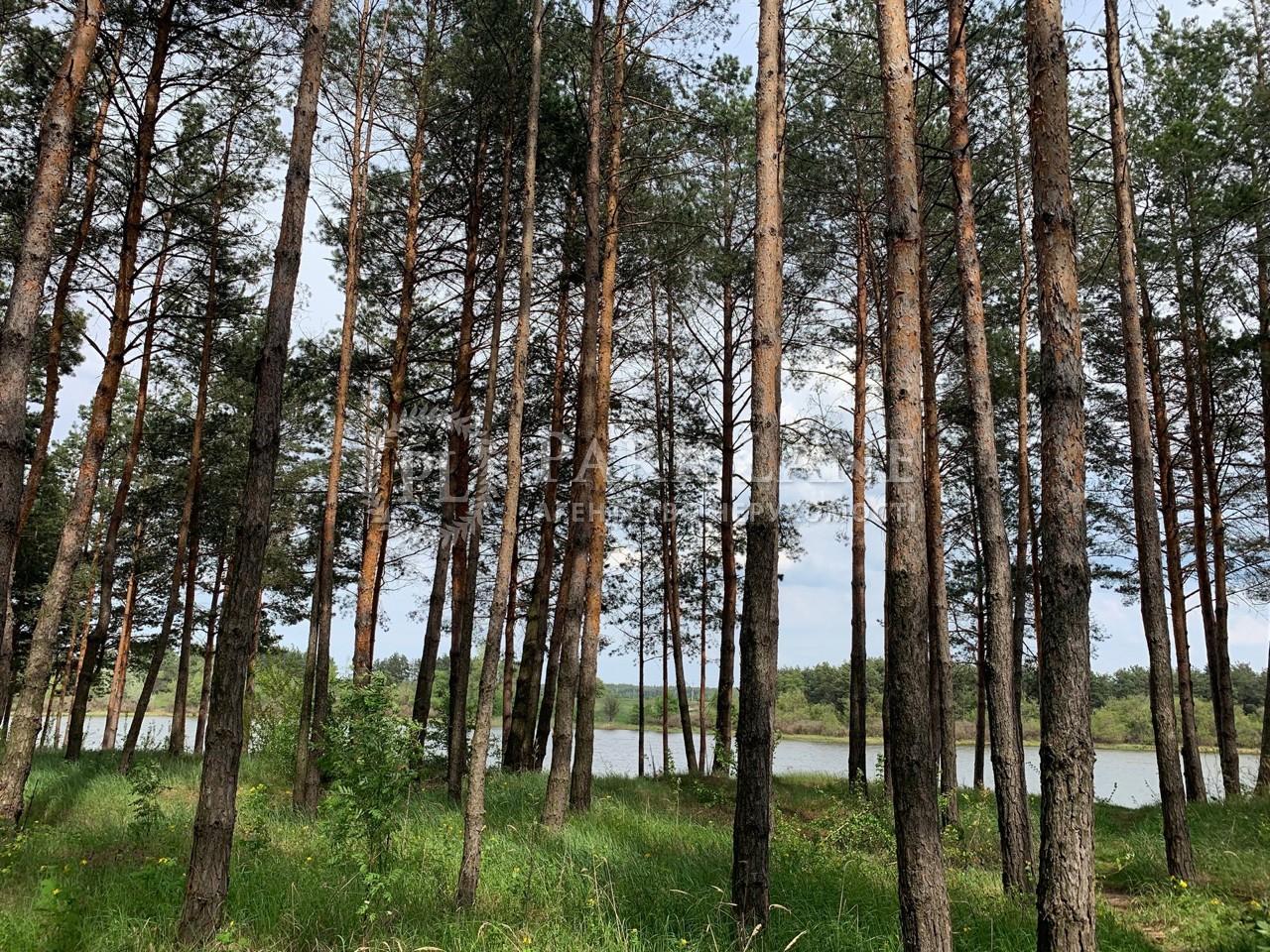 Земельна ділянка вул. Леніна, Лебедівка (Вишгородський), N-20712 - Фото 2
