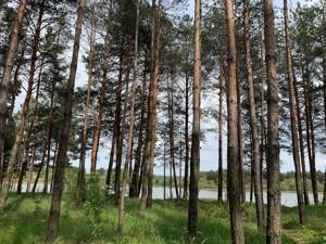 Земельный участок N-20712, Ленина, Лебедевка (Вышгородский) - Фото 2