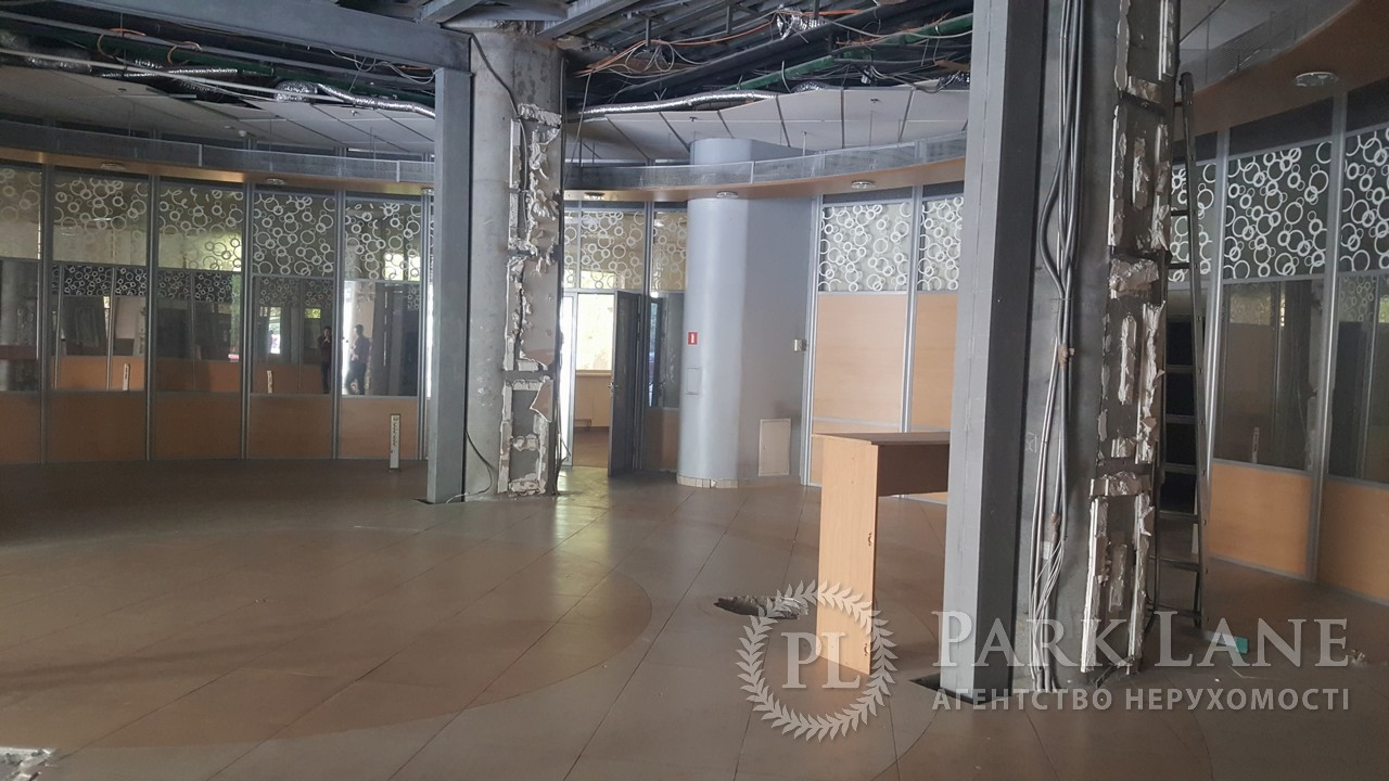 Нежилое помещение, ул. Жилянская, Киев, B-99157 - Фото 16