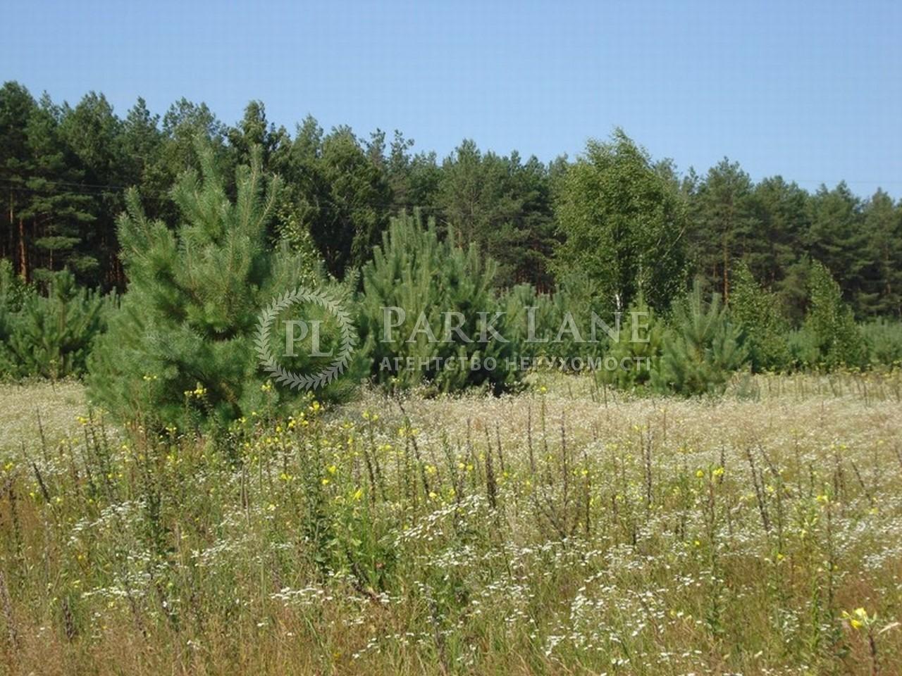 Земельный участок I-18585, Бобрица (Киево-Святошинский) - Фото 3