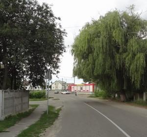 Дом Z-564547, Лубянка (Бородянский) - Фото 1