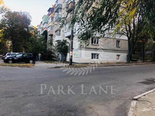 Нежилое помещение, Стадионная, Киев, B-100502 - Фото