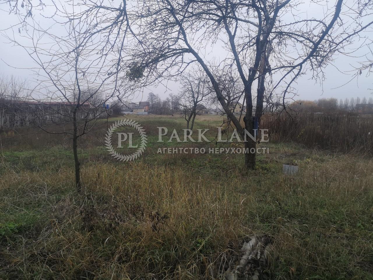 Земельный участок Погребы (Броварской), K-28635 - Фото 3