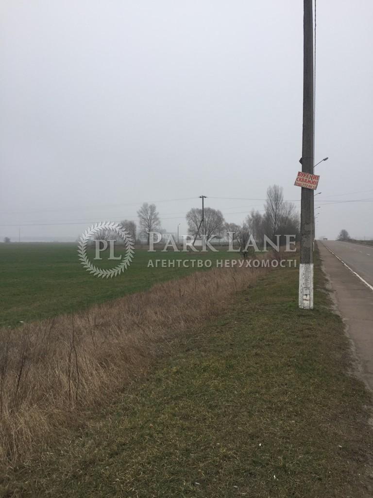 Земельный участок Большая Дымерка, N-21763 - Фото 4